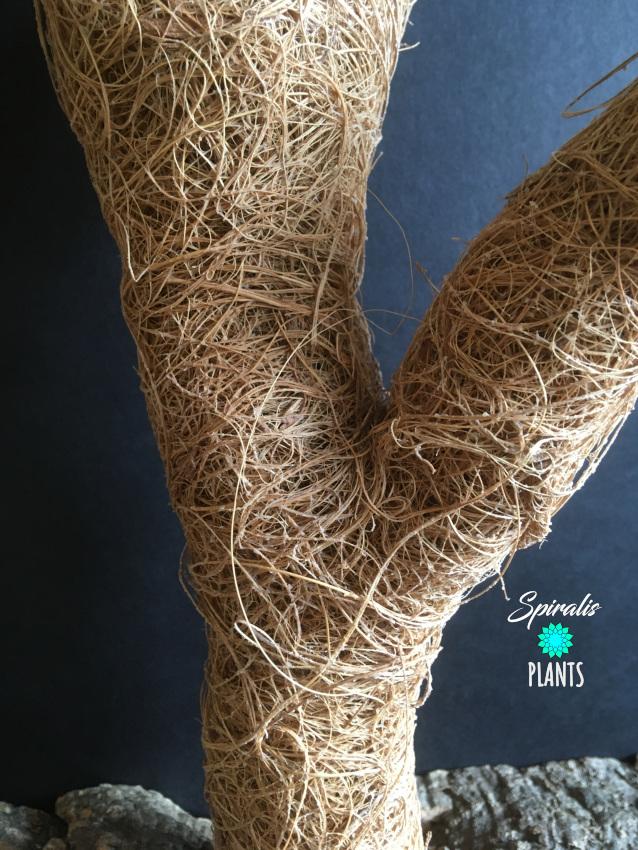 Coco coir flexible branch plant climbing support troncho