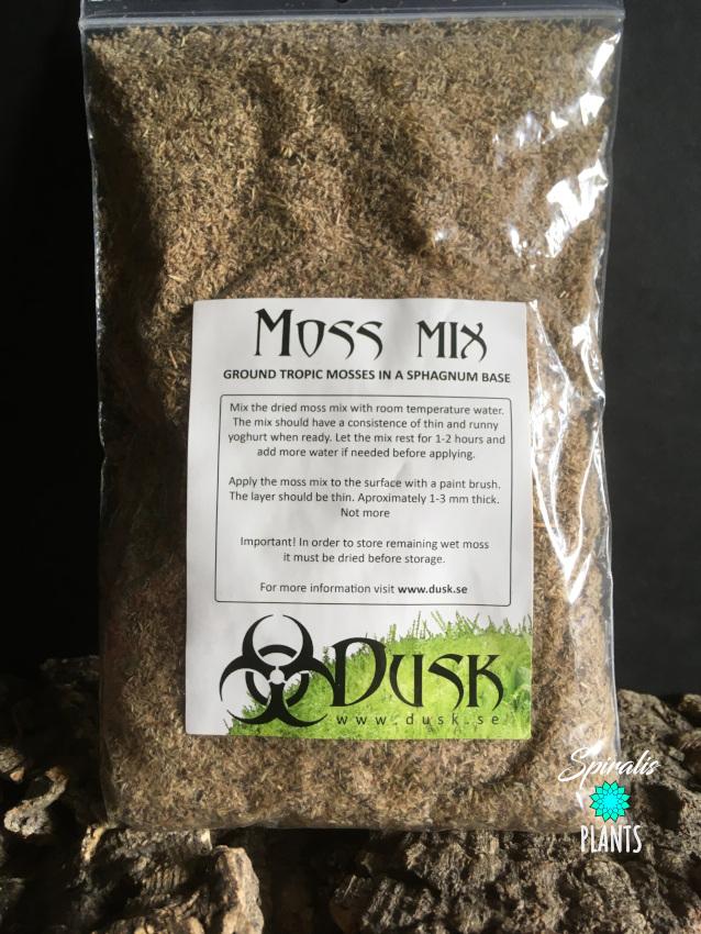 Dusk moss mix terrarium background sphagnum moss