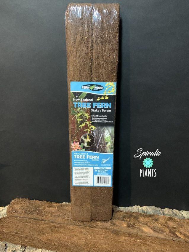 Fernwood New Zealand Tree Fern Totems Xaxim Terrarium Climbing Plant Support