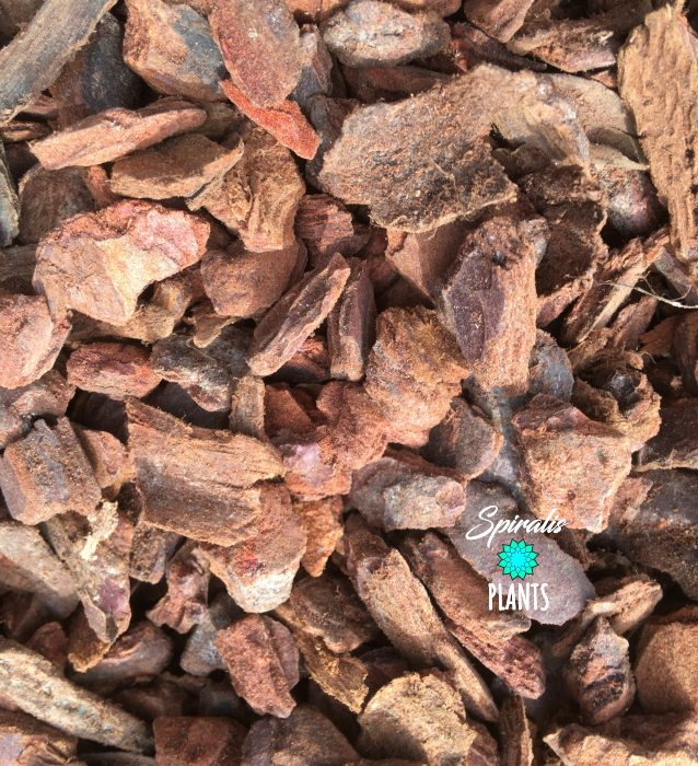 Orchid pine bark coarse aroid potting mix