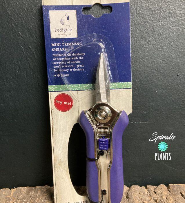 Pedigree mini snips house plant tools prune secateurs