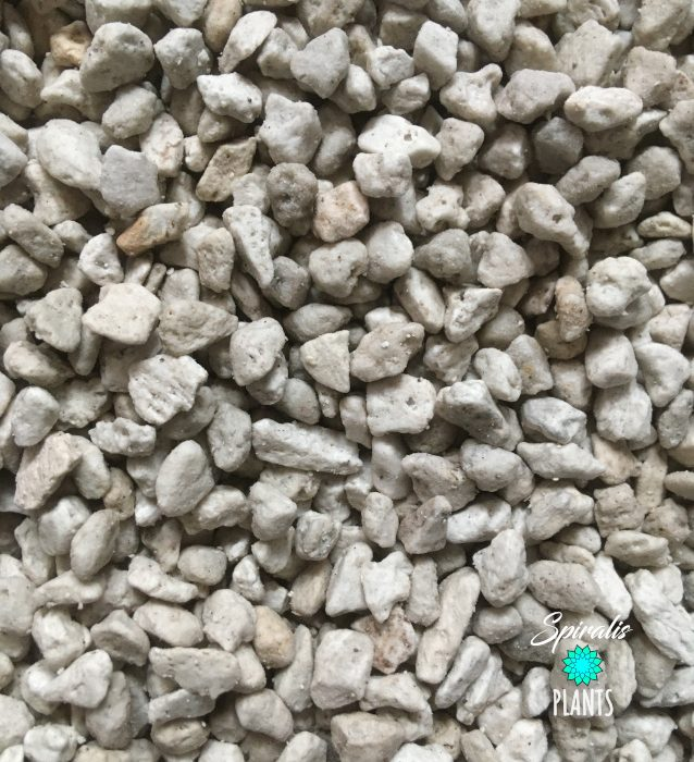 Pumice horticultural coarse grade 3-8mm drainage for tropical house plants cactus succulents