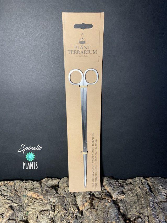 Terrarium long handled curved scissors